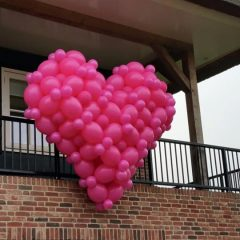 3d-ballonnen-hart